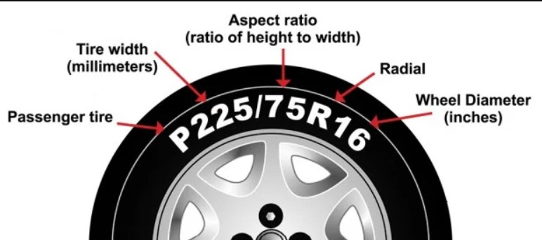 Read Tire Sizes